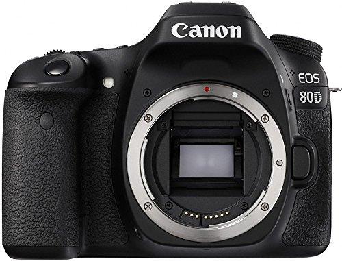 Câmera Profissional Canon 80d só o Corpo