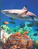 Mon livre imagé sur le requin: Mon premier imagier pour les enfants sur les animaux de la...