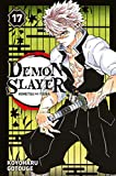 Demon Slayer T17