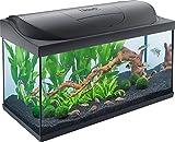Tetra Starter Line Kit d'Aquarium Complet avec éclairage LED...
