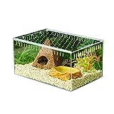 DierCosy Acrylique Transparent Boîte d'alimentation des Insectes Reptile Transport Container Cage d'élevage,...