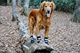 Bark Brite All Weather Neoprene Paw Protector Dog Boots with Reflective Straps in 5 Sizes! (Lg) Travel Zipper Case Included!
