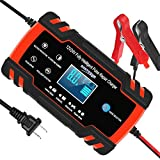 Automotive Battery Charger...