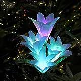 AHNNER Solar Garden...image