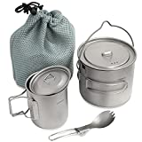 HOMFUL Camping Cookware Titanium Cooking Set,1100ML 420ML Camping Pots Cup Mug,Titanium Spork with Mesh Bag for Backpacking Hiking Picnic