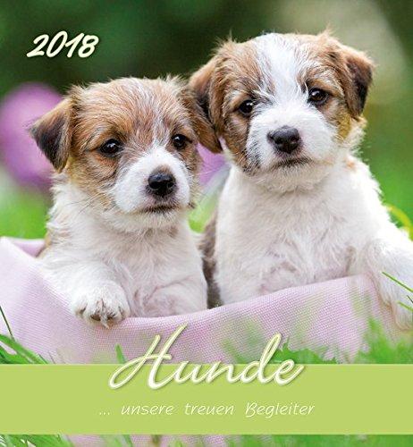 "'Calendario de pared""perros 201814,8x 16cm"