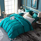 WarmKiss Premium Home Goose Down Comforter King 60oz Fill Weight 400TC 600 Fill Power Duvet Insert Soft Down Proof Shell Hypoallergenic for Autumn & Winter Turquoise Blue (King)
