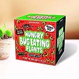 Gift Republic - Sow And Grow, Kit para el cultivo de plantas carnvoras