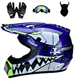Senhill Motocross Helmet ATV Offroad Helmet DOT Helmet Unisex Dirt Bike Motorcycle Helmet with...