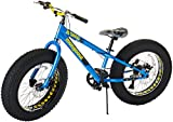 Mongoose Kong Fat Tire Mountain Bike for Kids, 20-Inch Wheels, Blue
