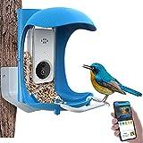 BirdDock Smart Bird Feeder with Camera WiFi APP Install, Quality Visual Storage Feeders, Night-Version Video Camera, Heavy Duty Base for Waterproof Outside/Yard/House /Tree Buddy(720ML)