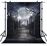 OUYIDA Halloween Theme 6X9FT Pictorial Cloth Seamless Customized Photography Backdrop Background Studio Prop TP17