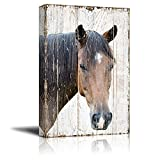 wall26 - Canvas Print Wall Art - Head of a Horse on Rustic Style Wood Background - Gallery Wrap Modern Home Decor | Ready to Hang - 16x24 inches