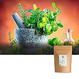 Orégano orgánico, hierbas secas