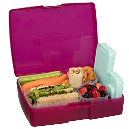 Bento Lunch Box with 5 Removable Containers – On the Go Meal Portion Control & Snack Packing (Raspberry)
