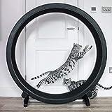 One Fast – Roue d'exercice pour chat, parfait pour les chats...