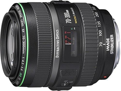 Canon 望遠ズームレンズ EF70-300mm F4.5-5.6 DO IS USM フルサイズ対応