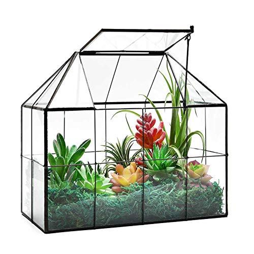Large Glass Terrarium House Planter – Succulent Plant Terrarium...