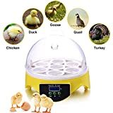 SUNCOO Mini Egg Incubator 7 Small Hatcher with Temperature Control, Digital Poultry Hatching for Chickens Ducks Birds