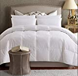 ELNIDO QUEEN White Goose Duck Down and Feather Comforter with 100% Cotton Cover-Warmth All Season Bedding Duvet Insert Stand Alone-Twin