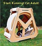 DIOPN Cat compagnie en carton ondulé chat escalade réservoir d 39 eau drôle chat jouet tapis de course pour...