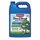 BioAdvanced 701525 12 Month Tree and Shrub Insect Control Landscape Formula Concentrate, 1-Gallon