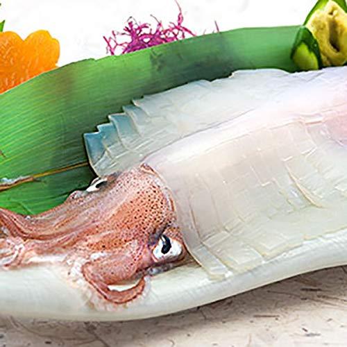 イカ 姿造り 4杯入り 2種類 剣先イカ スルメイカ 呼子 いか 瞬間冷凍 佐賀県産 玄界灘