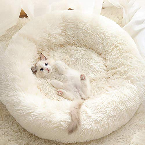 Gavenia Cat Beds for Indoor Cats,20''x20'' Washable Donut Cat and Dog Bed,Soft Plush Pet Cushion,Waterproof Bottom Fluffy Dog and Cat Calming and Self-Warming Bed for and Sleep Improvement,Beige