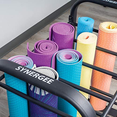 51HdFx2y EL - Home Fitness Guru