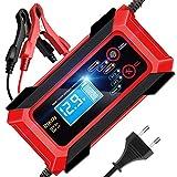 RIKIN Chargeur de Batterie Auto Rapide 8A 12V/24V Chargeur Moto Intelligent...
