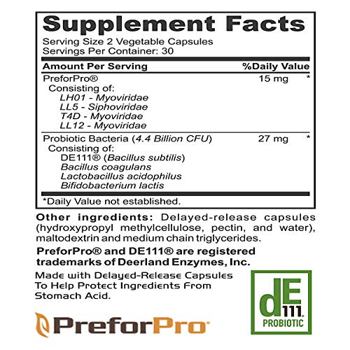 Probiotic Plus Best Prebiotic for Women Men Teens for Ultimate Deep Immune Gut and Digestive Health 7