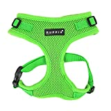 Authentic Puppia RiteFit Harness with Adjustable Neck, Green, Small