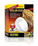 Exo Terra PT2334 Solar Glo - Sonnenlicht simulierende Lampe 80W