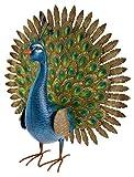 Green Jem Pfau Metall Garten Dekoration, Mehrfarbig, 25x 64x 64cm