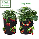 Strawberry Grow Bag,Strawberry Plant Grow Bags,Strawberries Planter Pot,Plants Growing Bag,400G Thickened Nonwoven Heavy Duty Aeration Fabrick Pots with Handles (7.0 Strawberry Bag)