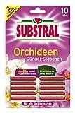 Substral Orchideen-Düngestäbchen mit Eisen-Plus und 2 Monate Langzeitwirkung, 10 Stück