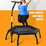 Raybee Mini Trampoline for Adults 40' Folding Leg Fitness Rebounder Trampoline with Adjustable Handle, Quiet Exercise Trampoline for Indoor Outdoor Garden Workout Max 330lbs