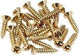 Fender パーツ Pickguard/Control Plate Mounting Screws (24) (Gold) 994924000