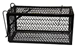 Harris Catch and Release Humane Animal and Rodent Cage Trap for Mice, Rats, Chipmunks, Small Squirrels, and Voles (9.3in x 4.3in x 4.5in)