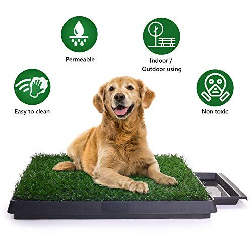 Hundetoilette, Hundeklo Toilette, Trainingsunterlage für Kleine Hunde Grosse Hunde ältere Hunde Tier WC Indoor Welpentoilette Trainingsunterlage Gras mit Kunstrasen 63 x 50cm