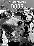 Elliot Erwitt's dogs