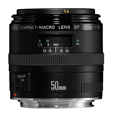 Canon 単焦点マクロレンズ EF50mm F2.5 コンパクトマクロ フルサイズ対応