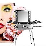 ZXCASD Profesional Estuche De Maquillaje, Maletín De Maquillaje Maletas Portátil con 4 Ruedas Y Luces Y Espejo, Tablero De Cubierta Y Bandejas