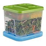 Rubbermaid LunchBlox Salad Kit 1806179,Green