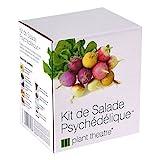 Kit de Salade Psychédélique par Plant Theatre - 5 salades étonnantes à cultiver soi-même -...