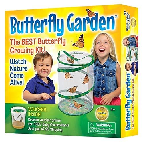 Insect Lore, Jardín vivo mariposas