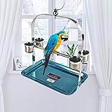perfecti Perchoir Perroquet en Acier Inoxydable Oiseaux Perches Perroquet Stand Jouet avec Mangeoire Formation...