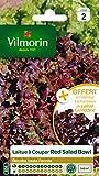 Vilmorin 3609842 Pack de Graines Laitue à Couper Salade Bol Rouge + Echantillon Laitue à Couper Grenadine