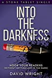 Into The Darkness: Hook Your Readers (Stone Tablet Singles Book 3)