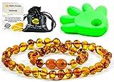 AmberJewellery Collar de Ambar 33cm. - De la Máxima Calidad Certificado Genuino...